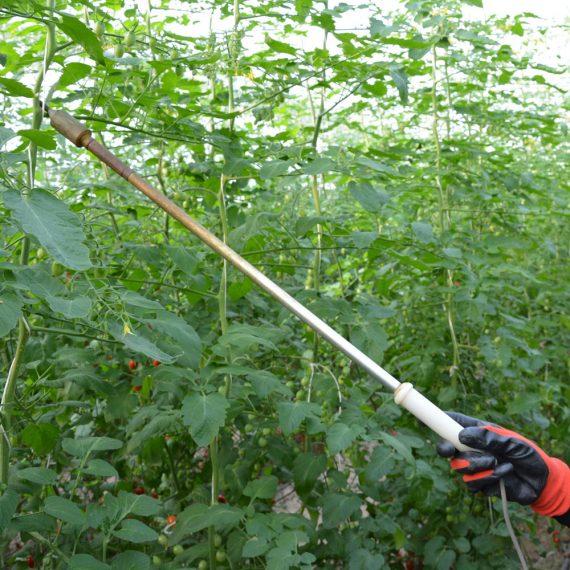 ویبراتور تلقیح گیاه